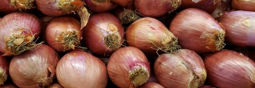 Five points on food inflation and onions