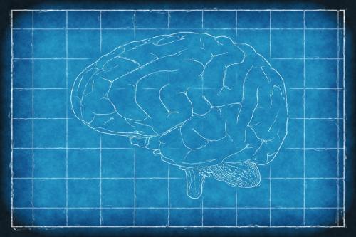प्रदूषण के चलते बदल रही है बच्चों के मस्तिष्क की संरचना