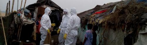 Poultry culling in Bhubaneswar amid bird flu fears