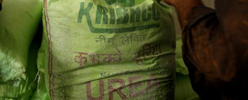 Budget 2020-21: Expect direct benefit transfer for urea