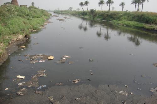 बजट 2020-21: राष्ट्रीय नदी संरक्षण योजना के बजट में बड़ी कटौती