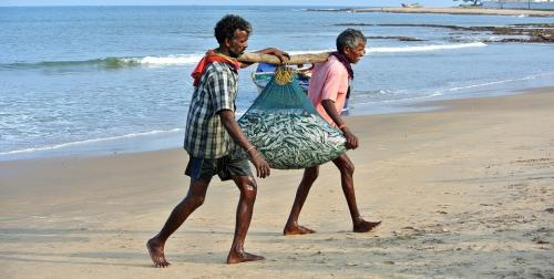 Union Budget 2020-21: Fisheries experts raise concerns over 'blue economy'