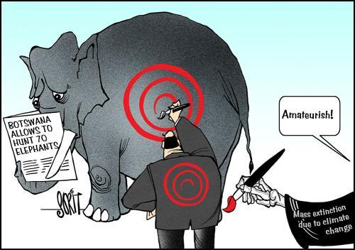 Botswana allows to hunt 70 elephants