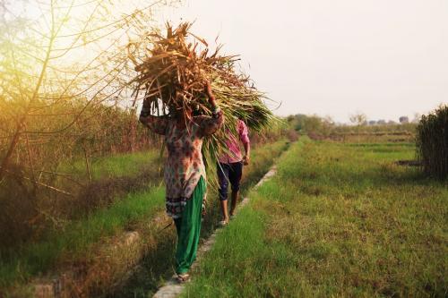 महाराष्ट्र गन्ना उद्योग: मीठी चीनी का कड़वा सच जानकर चौंक जाएंगे आप!