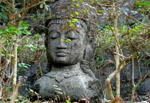 पर्यावरण और बौद्ध चिंतन