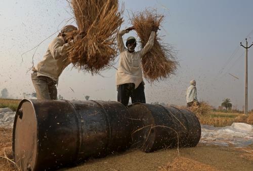 हरियाणा बजट 2020-21: कृषि खर्च में आठ फीसदी तक होगा इजाफा!