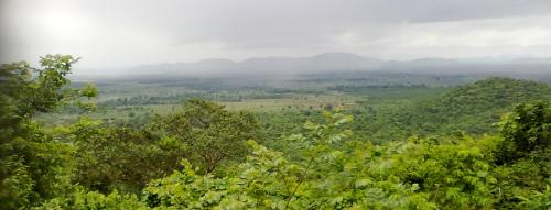 In a first, Odisha studies potential forest land under FRA