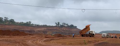 Jharkhand wipes 3 wildlife sanctuaries off records for iron ore mining
