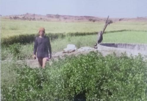 जलशक्ति अभियान की हकीकत: मध्यप्रदेश के राजगढ़ की दारुण तस्वीर