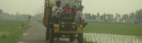 COVID 19: Punjab's rural economy takes a big hit