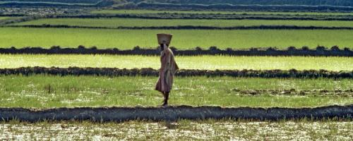 COVID-19: African economy could take up to 3 years to revive