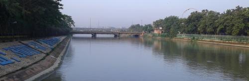 Has COVID-19 lockdown really helped Yamuna health in Delhi?