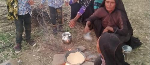 COVID-19: 300-400 Maldhari families from Gujarat stranded in Chhattisgarh