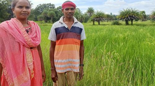 DMF best practices: Keonjhar and Dantewada strengthen livelihoods