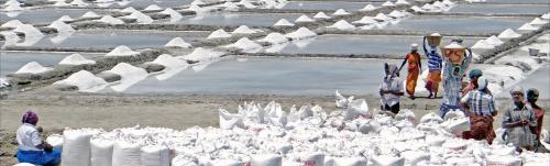 COVID-19: Salt manufacturers struggle to meet production targets