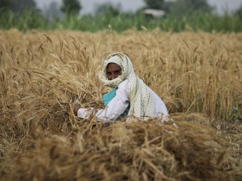 Being an Indian farmer…