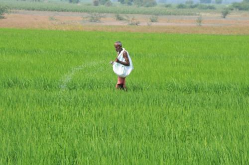 Centre wants to ban a host of pesticides: Here's why