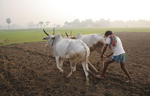 COVID-19: 60% farmers suffered yield loss on their harvest, shows survey