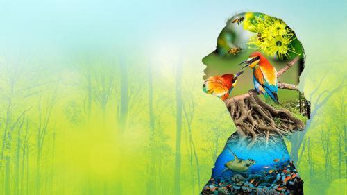 International Day for Biological Diversity 2020: Spotlight on nature-based solutions