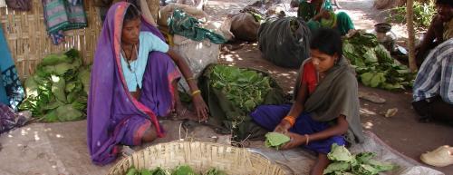 Chhattisgarh revokes: Forest dept no longer nodal agency for community rights