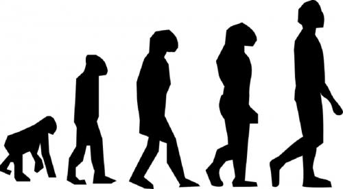 Evolution: why it seems to have a direction and what to expect next