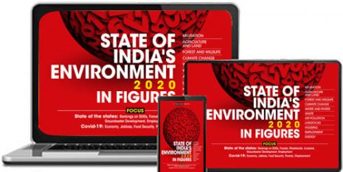 State of India's Environment 2020: In Figures (e-book)