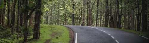 Environmental crimes: India may take upto 33 yrs to clear case backlog, says report