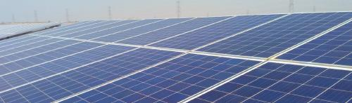 Green energy funding delays to offset COVID-19 environmental gains: Study