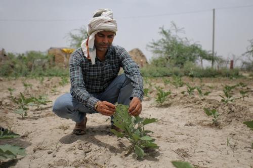 किसानों के लिए आ रही है नई मुसीबत