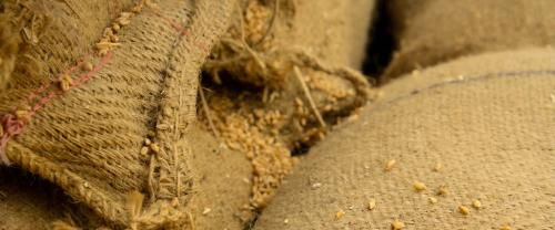 FAO claims new platform to help fight food loss, wastage