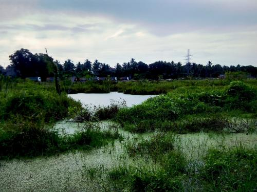 How an entrepreneur saved Kerala wetland ecosystem from real estate interest