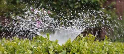 Micro-irrigation: The way ahead for sustainable agriculture