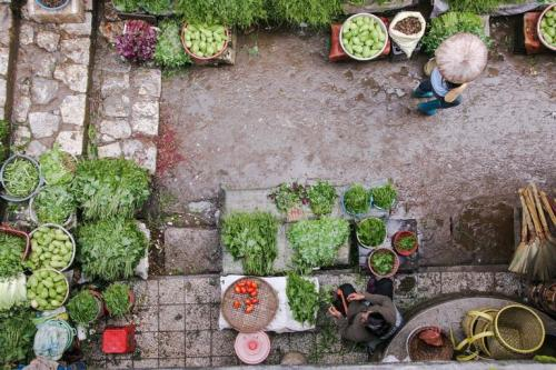 National nutrition week: How kitchen gardens are saving villagers from malnourishment