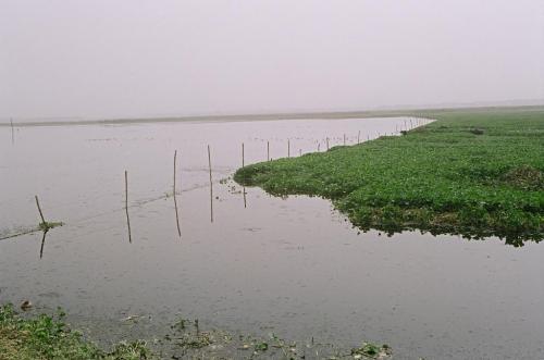 लॉकडाउन में नदियों के पानी की गुणवत्ता में खास सुधार नहीं हुआ : सीपीसीबी