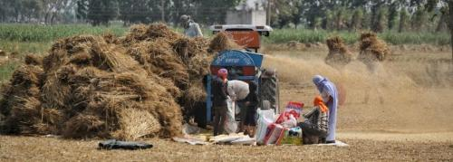 India's agrarian distress: How dissent has been on the rise