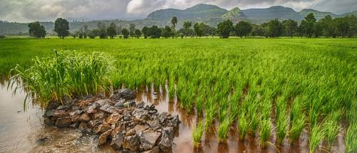 Did you know this monsoon was the first on a new calendar? Here's why we needed one