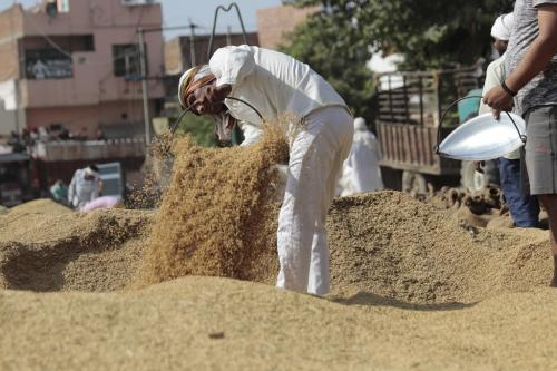 हरियाणा में अपनी धान बेच सकेंगे दूसरे राज्यों के किसान