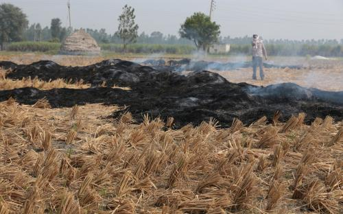 Counting north India's stubble fires: Stronger data science needed to study winter smog