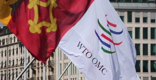 Will a new and 'improved' WTO be in India's interests