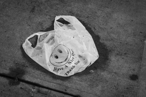 50 माइक्रोन से कम मोटाई वाले कैरी बैग पर 25 राज्यों और केंद्रशासित प्रदेशों ने लगाई रोक: रिपोर्ट