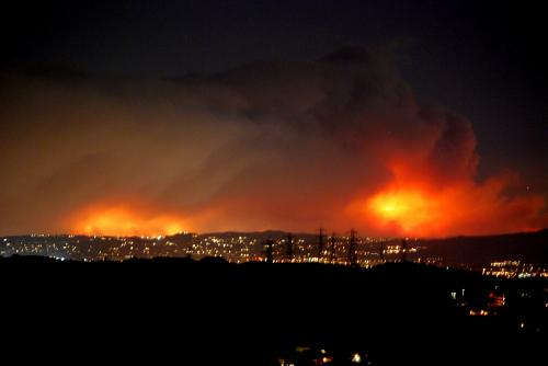 Spike in deaths, mental health concerns: Report flags consequences of wildfires