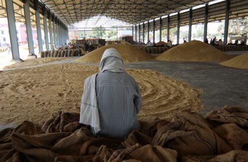 बासमती के गिरते भाव से सदमे में किसान, छोड़ सकते हैं खेती