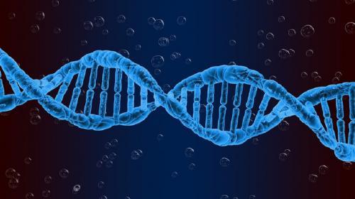 Indian genome sequences: 32 variations found unique