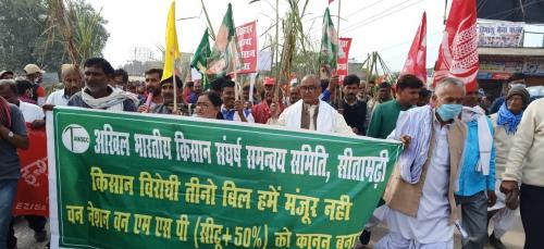 On Constitution Day, police use tear gas, water cannon on farmers