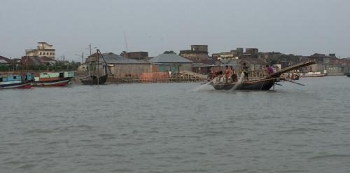 Discarded fishing gear threatens Ganga dolphins, turtles