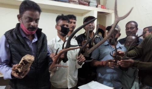 Wildlife parts, live chameleon seized in Odisha's Jajpur