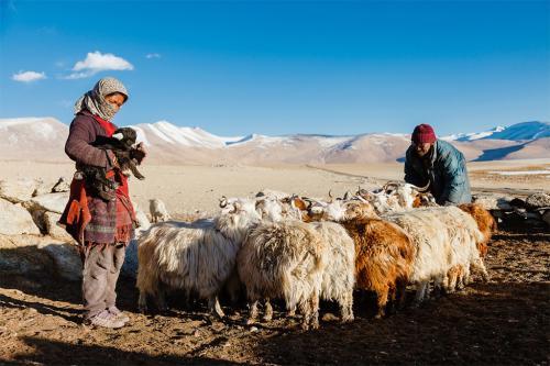 जलवायु परिवर्तन और जैव विविधता के नुकसान से पहाड़ों पर बढ़ी भुखमरी