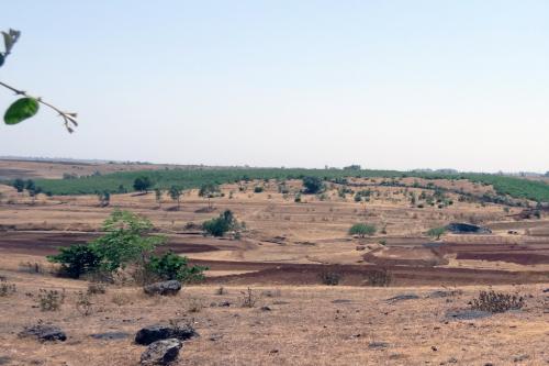दुनिया की 5.6 करोड़ हेक्टेयर खाली पड़ी कृषि भूमि पर लगाए जा सकते हैं सोलर प्लांट