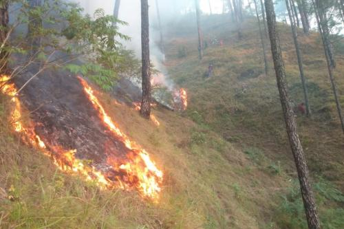 क्या अब उत्तराखंड के जंगलों में 12 महीने लगेगी आग?