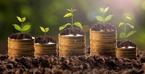 Union Budget 2021-22 cuts funds for autonomous bodies under environment ministry